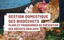 Lire la synthèse thématique « Gestion domestique des biodéchets - plans et programmes de prévention » (PDF - 3,58 Mo)