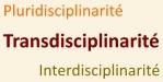 Transdisciplinarité
